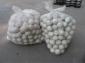 专业生产销售 白色40mm实心振动筛橡胶球